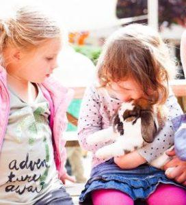 kinderopvang-elst-04jaarspelen