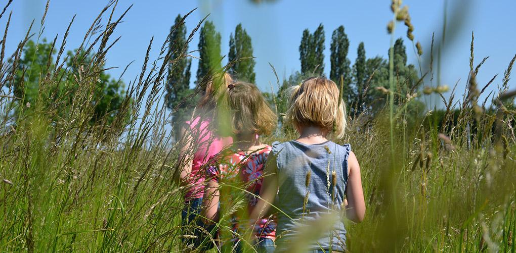 Kinderen lopen door een weiland met hoog gras